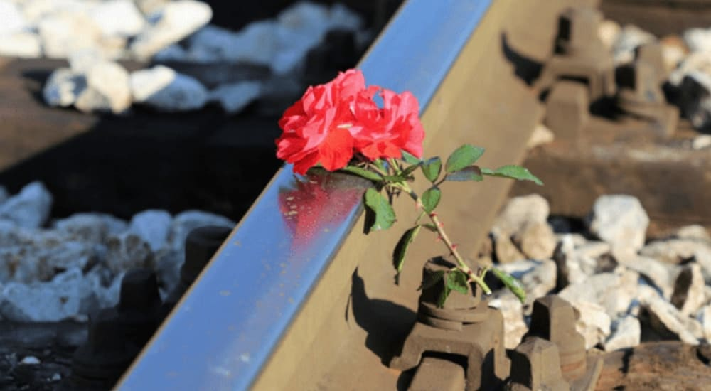 Railway Accidents Causes and Safety Measures | SDS Blog